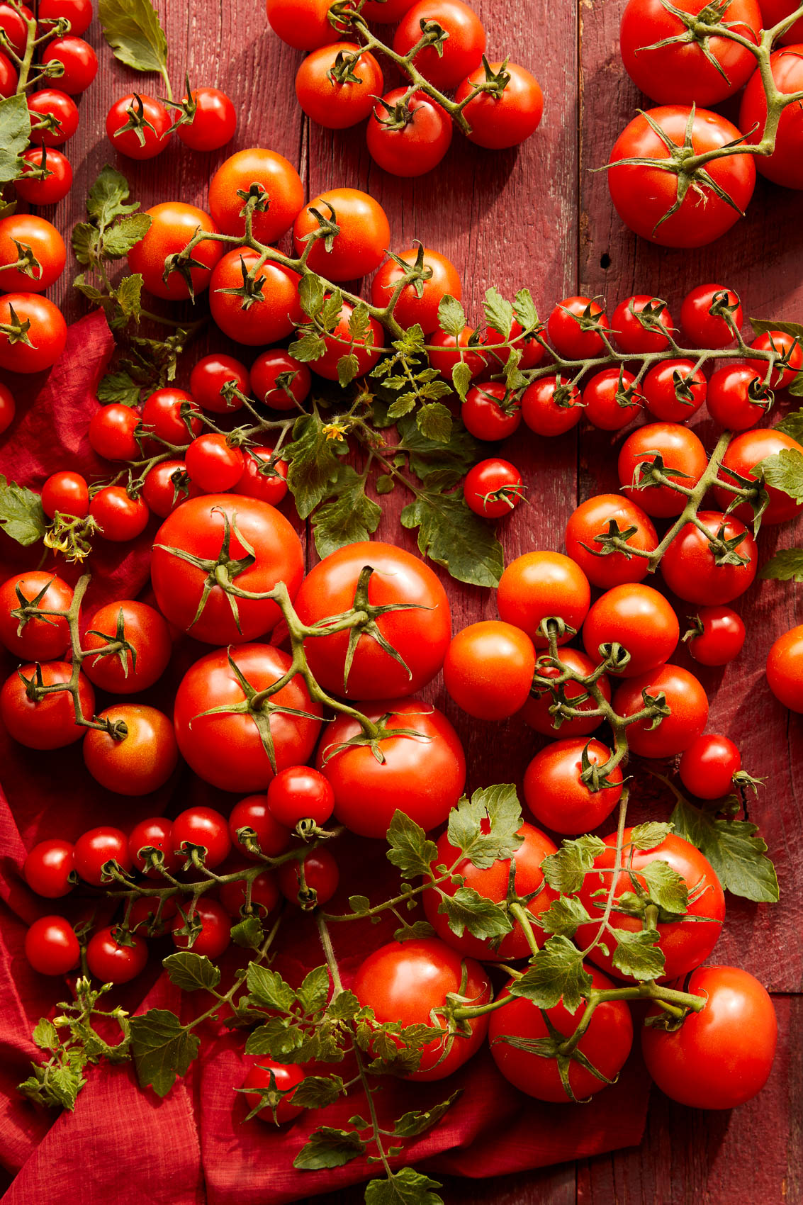 EatingVegetarian_Tomatoes_8171